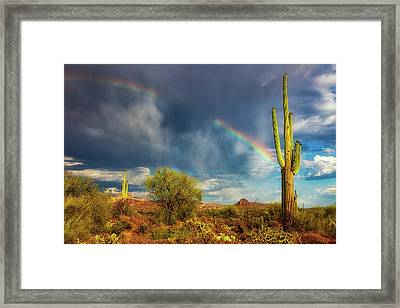 Respite From The Storm Framed Print