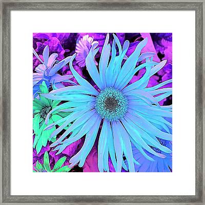 Rhapsody In Bleu Framed Print