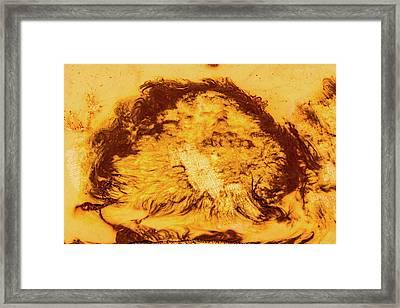 Rhapsody In Yellow Framed Print