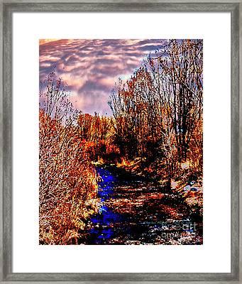 Rio Taos Bosque V Framed Print