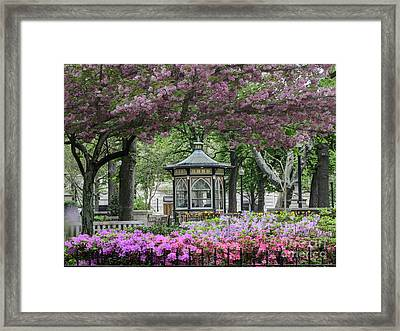 Rittenhouse In Spring Framed Print by Stacey Granger