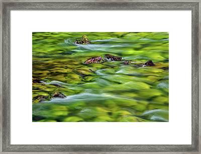 River Moss Framed Print by Leland D Howard