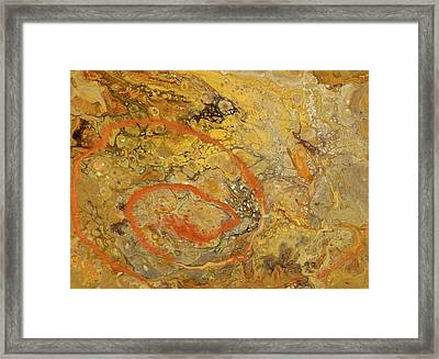 Riverbed Stone Framed Print