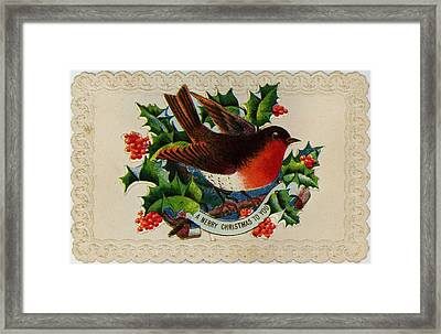 Robin Redbreast Framed Print by Hulton Archive