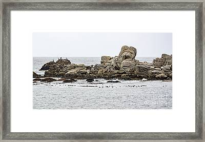 Rock Sculpture By Mother Nature Framed Print