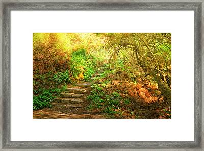Rock Stairs Framed Print