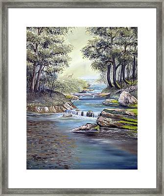 Framed Print featuring the painting Rocky Stream by Deleas Kilgore