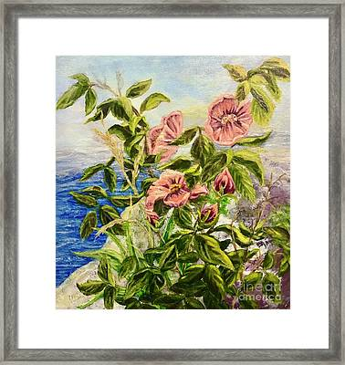Rosa By The Sea Framed Print