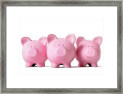 Row Of Pink Piggy Banks Framed Print by Hatman12