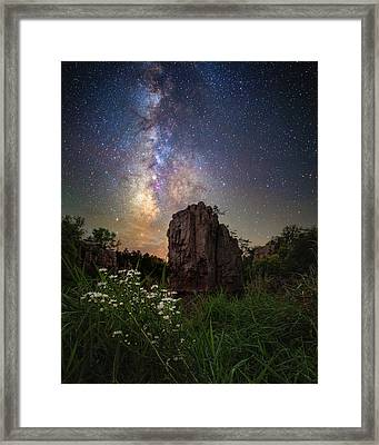 Framed Print featuring the photograph Royalty  by Aaron J Groen