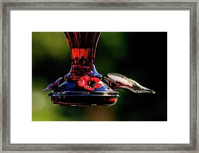 Framed Print featuring the photograph Ruby Throated Beak Deep by Onyonet  Photo Studios