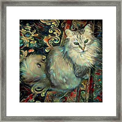 Samson The Silver Maine Coon Cat Framed Print