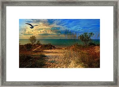 Sand Track To The Ocean At Dusk Framed Print