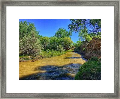 Framed Print featuring the photograph Sandhills Summer by Dan Miller