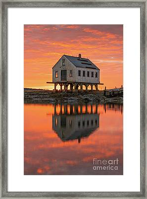 Scorched Symmetry Framed Print