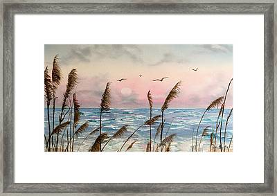 Sea Oats And Seagulls  Framed Print