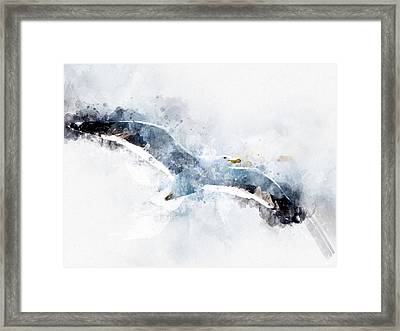 Seagull In Flight With Watercolor Effects Framed Print