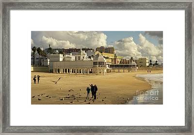 Framed Print featuring the photograph Seagulls At Caleta Beach Cadiz Spain by Pablo Avanzini
