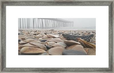 Framed Print featuring the photograph Seashells At The Pier by Robert Banach