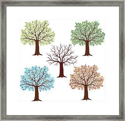 Seasonal Trees Framed Print by Flyinggiraffestudio