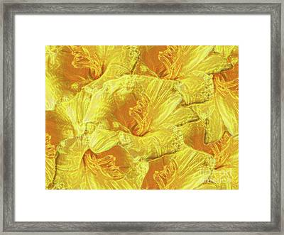 Selective Yellow Lilies Framed Print