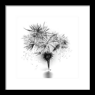 Visual Works Framed Prints