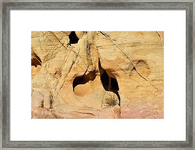 Shaped By Nature Framed Print