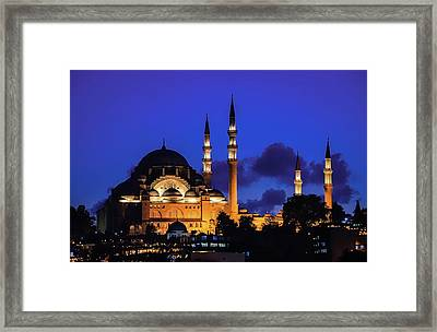 Framed Print featuring the photograph Shophia by Francisco Gomez
