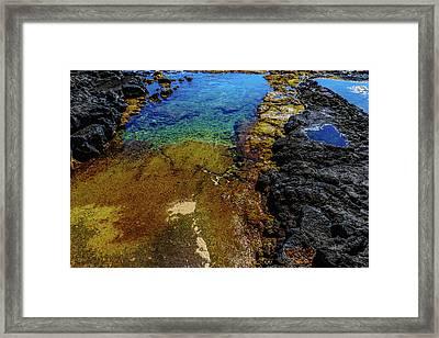 Shore Colors Framed Print