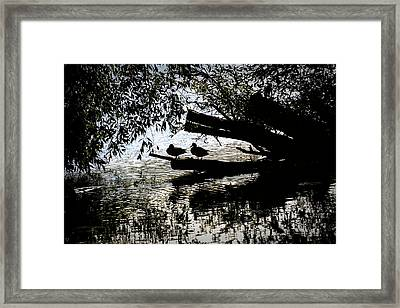 Silhouette Ducks #h9 Framed Print