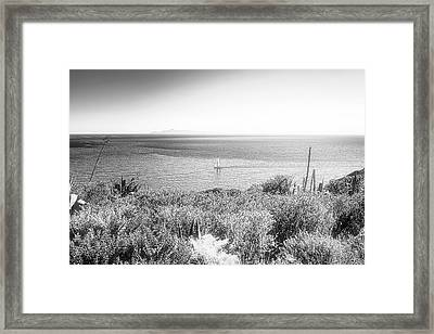 Silver Sailing Framed Print