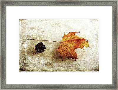 Framed Print featuring the photograph Simple And Beautiful by Randi Grace Nilsberg