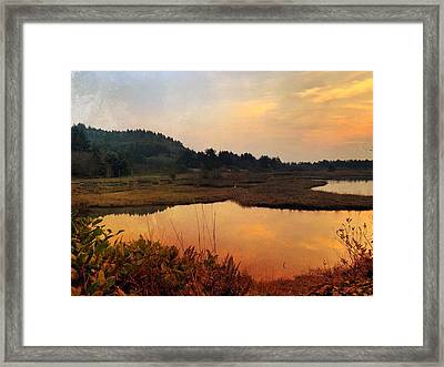 Framed Print featuring the digital art Sitka Sedge Sand Lake Eve by Chriss Pagani
