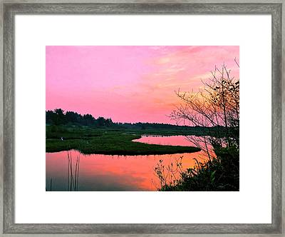Framed Print featuring the photograph Sitka Sedge Sunset by Chriss Pagani