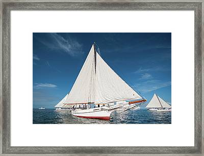 Framed Print featuring the photograph Skipjack Rosie Parks by Mark Duehmig