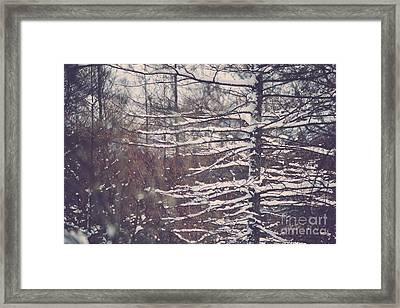 Snow Covered Framed Print