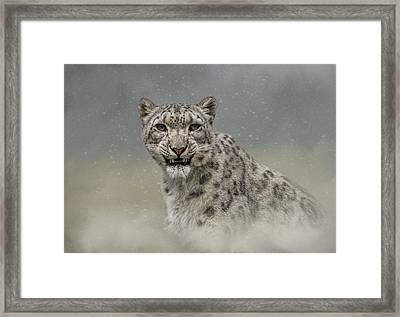 Snow Ghost Framed Print