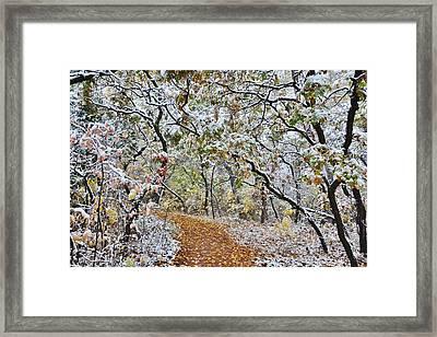Snow Greets Autumn Framed Print