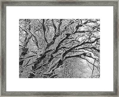 Snow Melt Framed Print