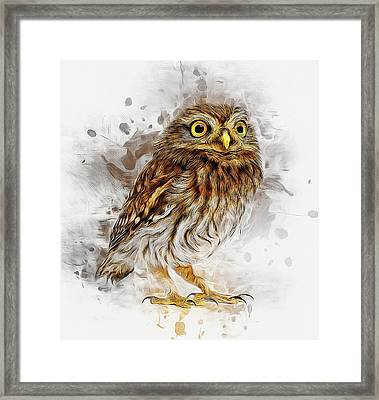 Snow Owl Framed Print