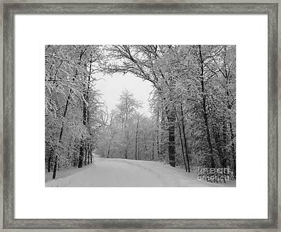 Snow Trail Framed Print