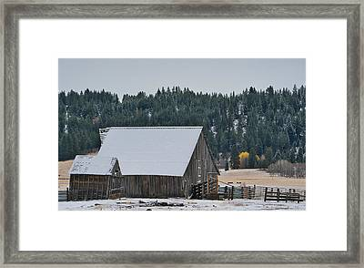 Snowy Barn Yellow Tree Framed Print