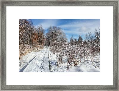 Snowy Boardwalk Framed Print