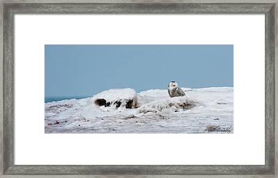 Snowy Day Framed Print