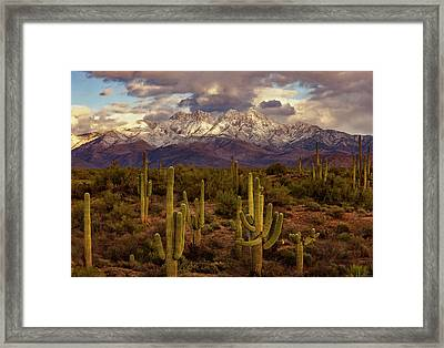 Snowy Dreams Framed Print