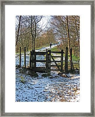 Snowy Path Framed Print