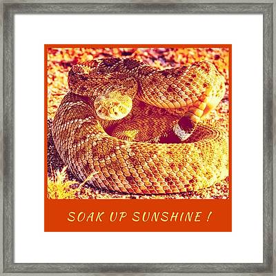 Soak Up Sunshine Framed Print