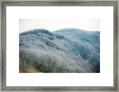 Soft Hoarfrost Framed Print