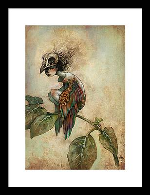 Fairy Wings Framed Prints