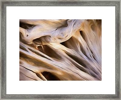 Framed Print featuring the mixed media Spare Root 3 by Lynda Lehmann
